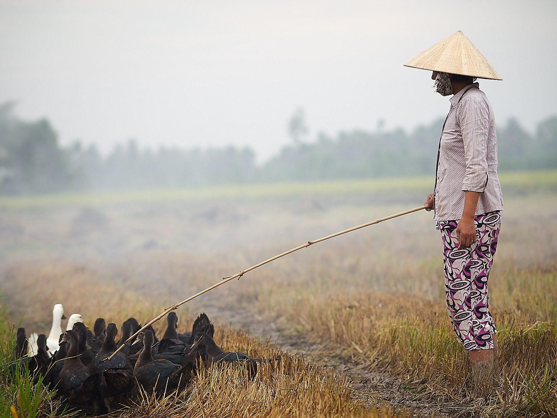 Andevakt i Mekong - Foto: Geir Ertzgaard